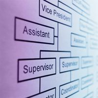 Una firma`s organizational structure lays out the company`s employee hierarchy.