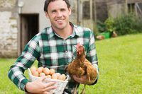 agricultor titular de pollo joven y una cesta de huevos.