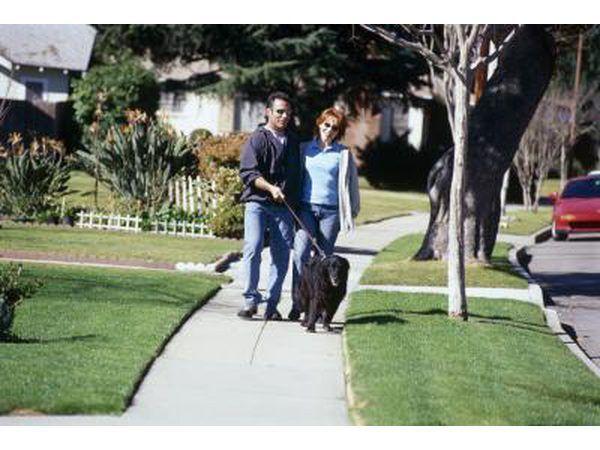 Caminar a través de su vecindario