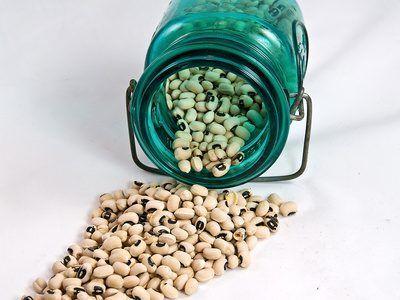 frijol blanco y negro de ojos guisantes son ricos en almidón resistente.