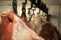 los conductores de camiones de ganado aseguran que el ganado llegue a su destino.