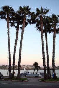 La industria del cine EE.UU. se centra en California.