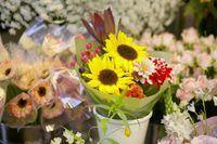 Las mejores tiendas de flores ofrecen opciones en muchos rangos de precios.