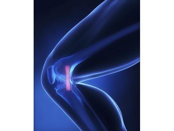 imagen 3D de la pierna humana.