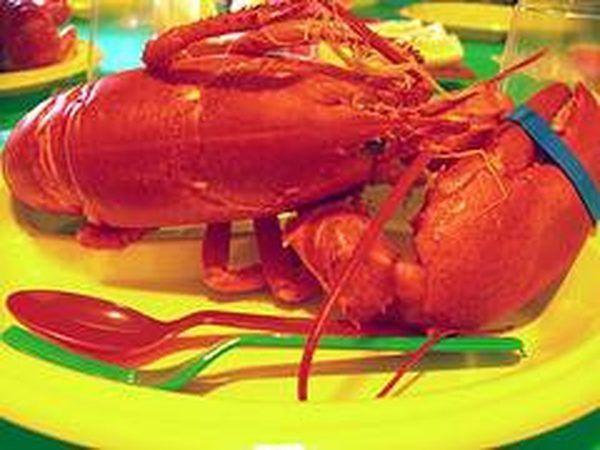 La cena de langosta-NYC, Lall, 6/06, Flickrcommons