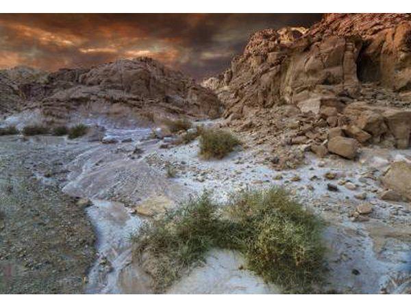 El desierto de Negev abarca más de la mitad del territorio en Israel