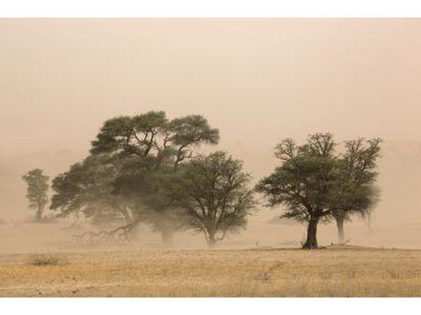 tormenta de polvo severa en el desierto de Kalahari, África del Sur